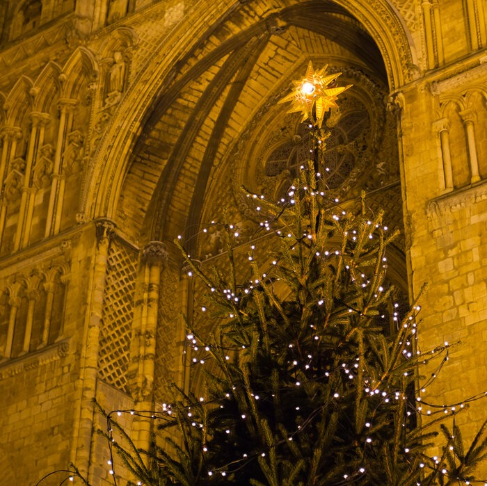 Christmas tree in front Lincoln Cathedral